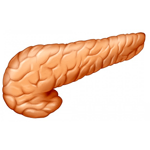 or_pancreas