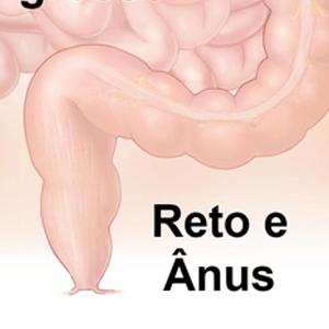or_reto-anus